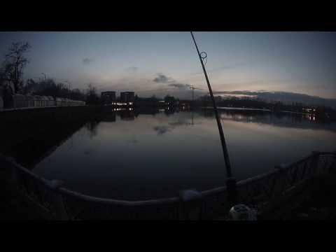 e83db5e5fec Team Daiwa Zillion 100 HLC.Вечорка! - YouTube