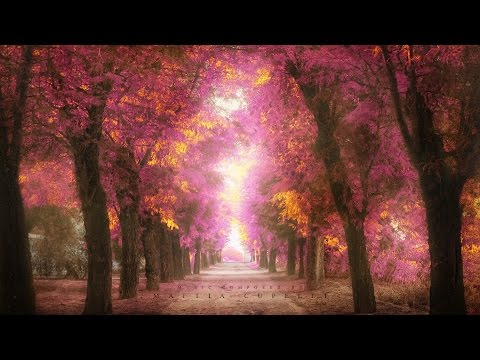 1 Hour Of The Most Beautiful Emotional Orchestral Music