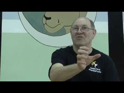 The MA-80 Modern Arnis System - interview with Professor Dan Anderson