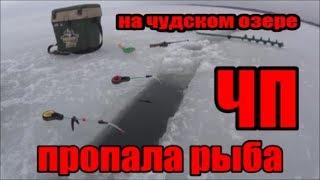 озеро Чудское д.Спицино Peipsi ЧП на озере ПРОПАЛА РЫБА Зимняя рыбалка