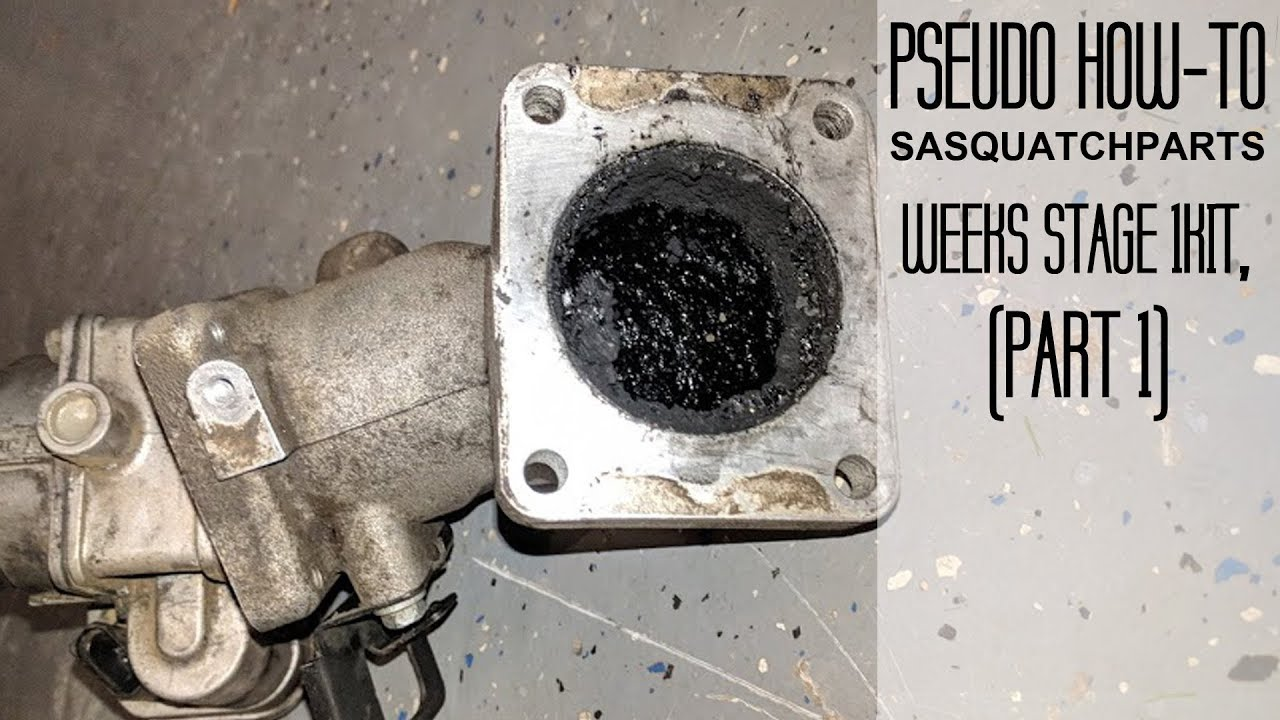 Pseudo How To: Install Sasquatch Parts Weeks Stage 1 kit, Part 1 - Stock  Removal!