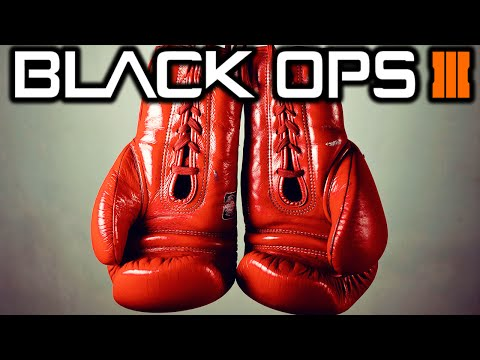 BO3 Boxing Gloves LEAKED + Earn Weapons Via Contracts?
