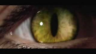 Catwoman 2004 trailer