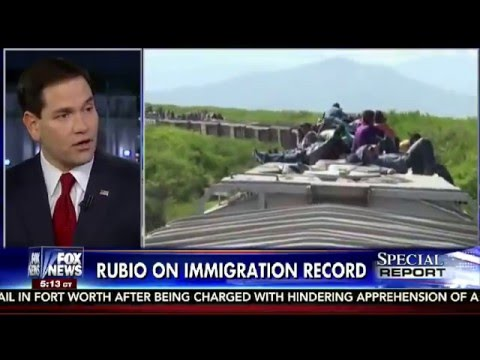 Marco Rubio on Special Report