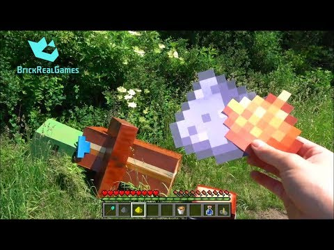 Realistic Minecraft in Real Life Zombie Villager vs Shovel ...