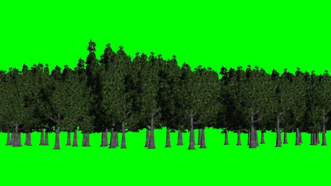 forest green screen background green and blue free green screen youtube
