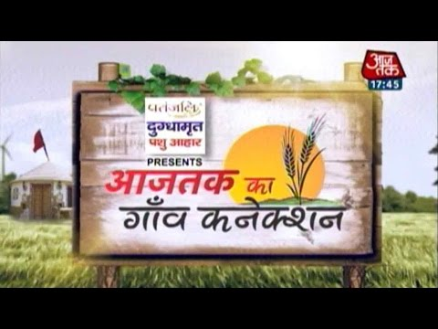 Aaj Tak Ka Gaon Connection: Pratapgarh Village In Uttar Pradesh