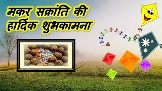 Happy Makar Sankranti 2020, Wishes, Images, Whatsapp Video Download, Animation And Greetings