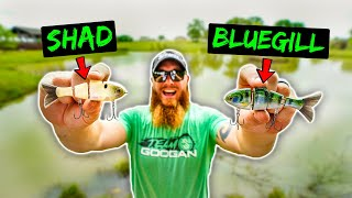 Ultimate Swimbait CHALLENGE - Shad vs Bluegill - Which One is BETTER??