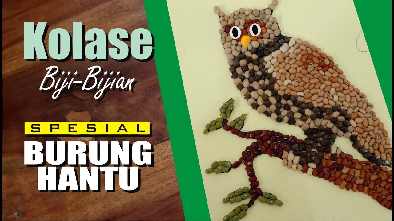 Kreasi Kolase Biji Bijian Spesial Burung Hantu Youtube