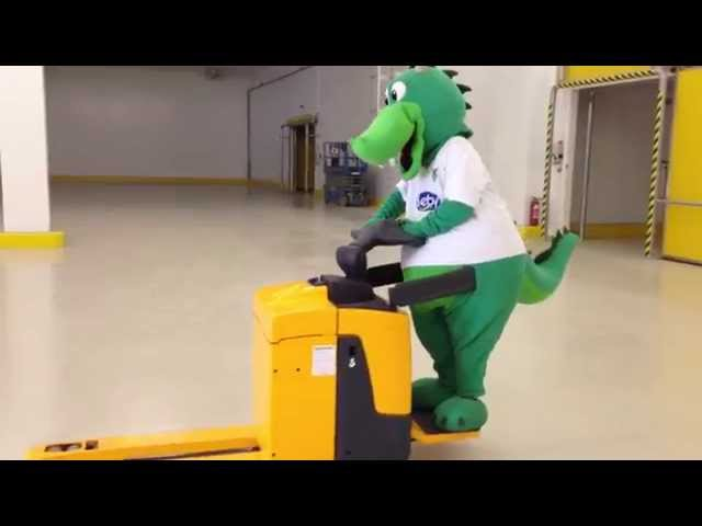 Distribution Center  DERBY® |   Dragon in Action   -  Funny VIDEO 3