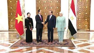 Lễ đón Chủ tịch nước Trần Đại Quang và phu nhân thăm cấp Nhà nước tới Cộng hòa Arab Ai Cập