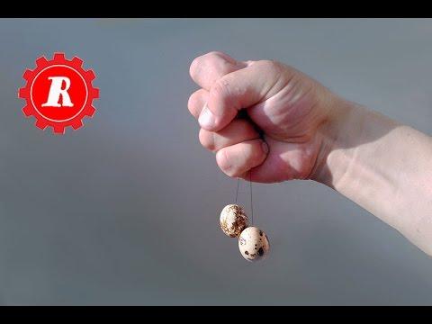 Простые штуки - Сила в яйцах...