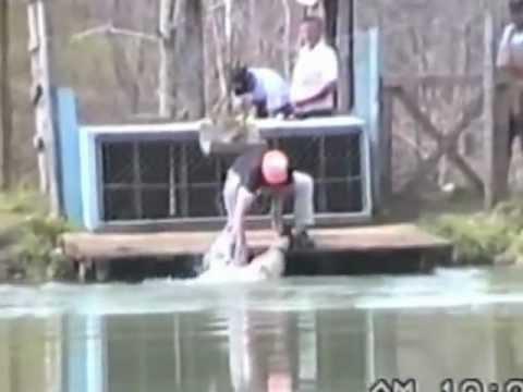 Coon Dog Races In Southwest Va Youtube