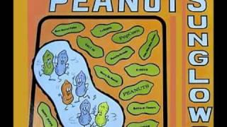 SUNGLOWS - Peanuts (La Cacahuata) Long Version!  (1965)