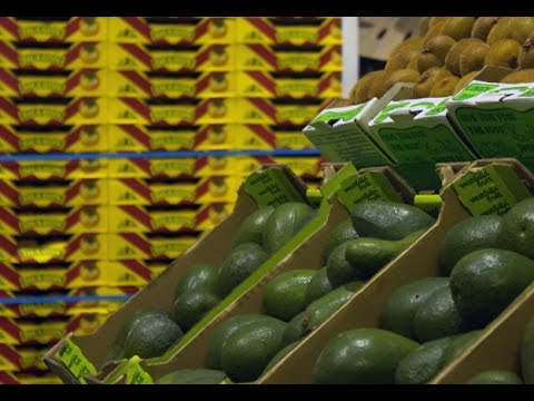 WATCH: Fuel costs take a bite into fruit and veg trade