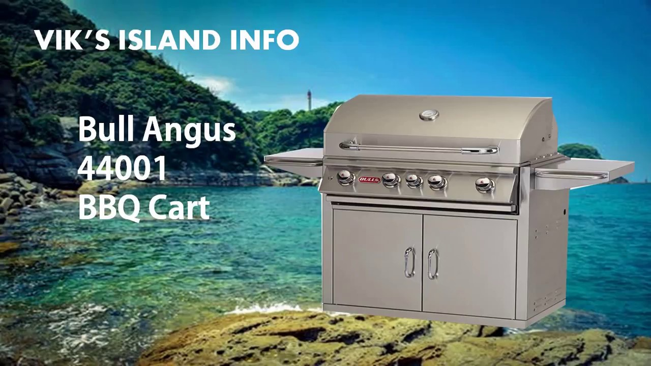 Bull Angus 44001 Outdoor Grill Review - YouTube