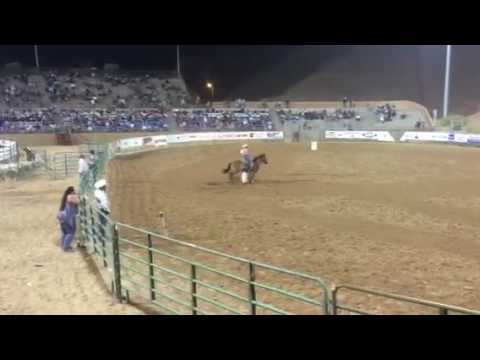 Barrel Racing Horses For Sale 2017 Youtube