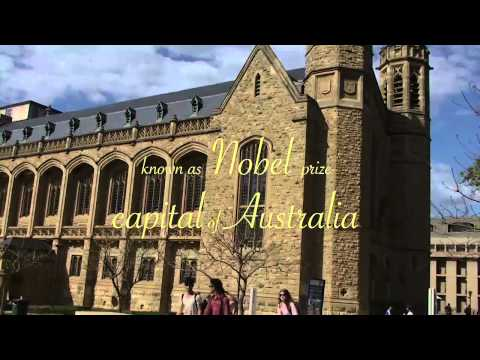 Top 5 Reasons to Study in Adelaide