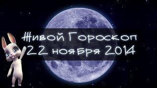 Зайка Zoobe - гороскоп для КОЗЕРОГОВ ♑. + Ржачный прикол!