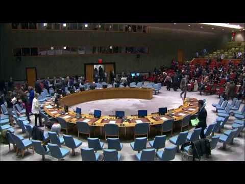 Security Council: The situation in the Bolivarian Republic of Venezuela