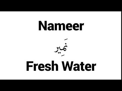How to Pronounce Nameer! - Middle Eastern Names