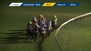 Vidéo de la course PMU PRIX OLD MASTER