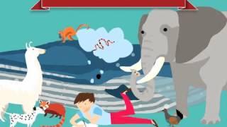Animal Habitats App for kids. iPad. Xmas promo.