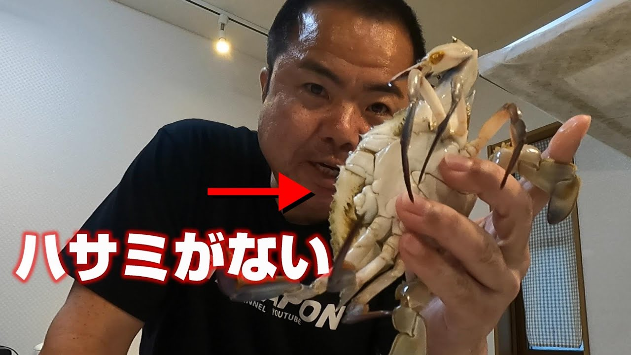 ボツ動画だけど爪のない蟹とコチが旨すぎて