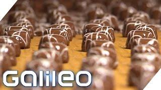 Herstellung der Mini-Praline | Galileo | ProSieben