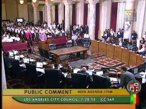 LA Council Meeting Video