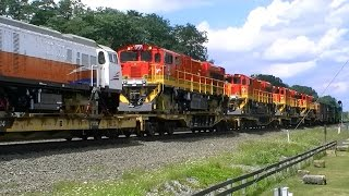 NS 098 In Cresson With Hornshow, Standard Cab EMD Duo, And Export GE