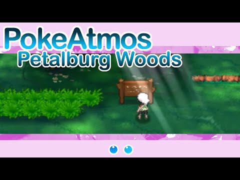 Pokemon: Petalburg Woods (Ambient Remix) |