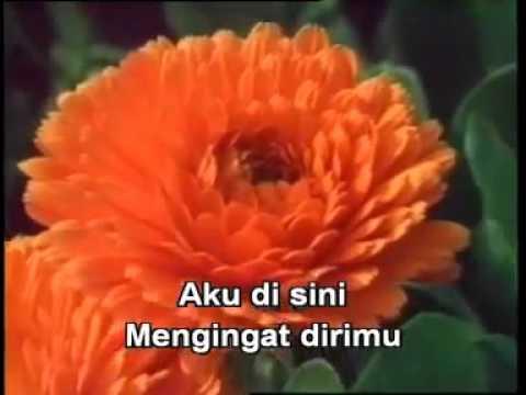 CINTA TERAKHIR GIGI INDONESIA CIKONG KARAOKE