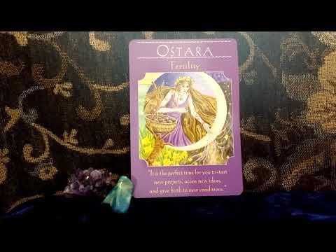Daily Oracle Card Reading OSTARA 20th March 2018 Goddess Guidance  tarot