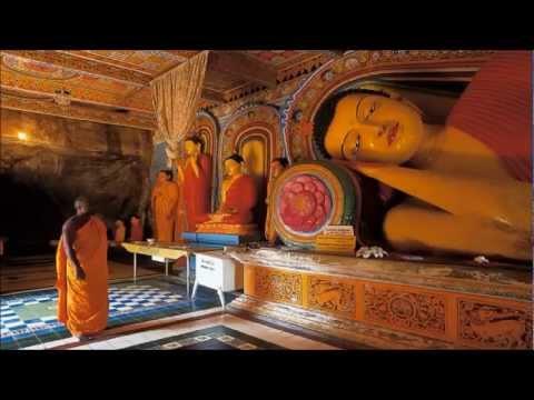Towards a Better World (Loweda sangarawa) - Part 1