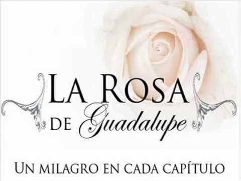 Musica de la rosa de Guadalupe