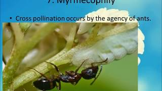 sexual reproduction in flowering plants class 12 part-1