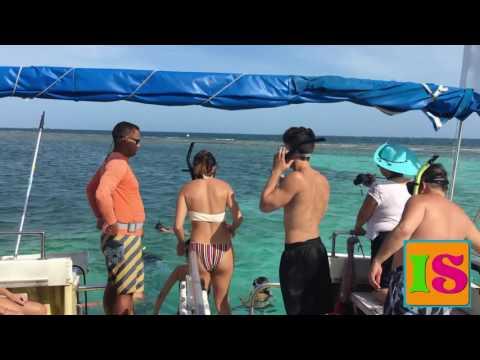 Snorkeling La Parguera Puerto Rico