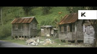 1960s St Lucia, Caribbean, Local People, Market,16mm Colour Home Movies