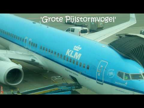 Flight report ✈ B737-8: KLM to Milano Malpensa airport (MXP) 2017.