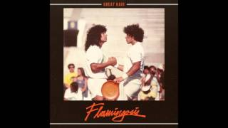 Flamingosis - I met a funky lady
