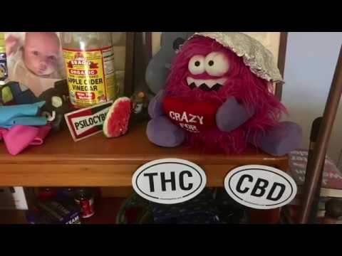 talking-thc-blues.-messiahsez-tried-thc-for-the-first-time.-why-am-i-so-hungry?-munchies-i-call-it!