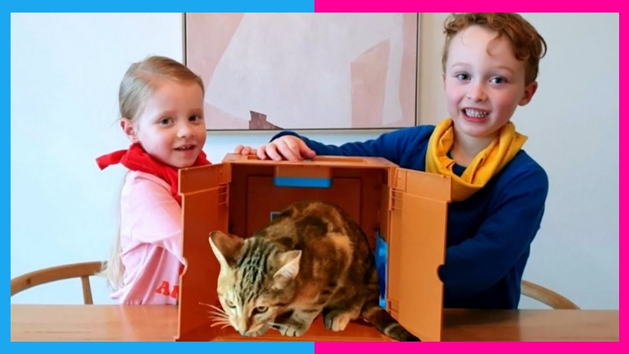 What's in the Box | Kids videos for kids | mystery surprise challenge | Jobe and Indi's Adventures