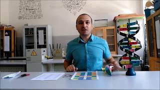 3D Origami DNA Yapımı  - Lise ve Ortaokul Deneyleri - Kurtuluş ATLI