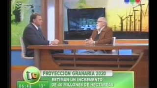 PROYECCION GRANARIA 2020
