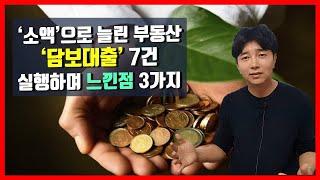 '소액' 투자로 늘린 부동산....7건 '담보'대출 실…