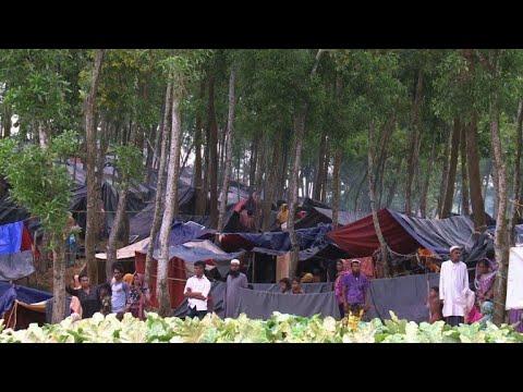 Rohingya refugees continue to spill across Bangladesh border