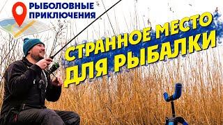 Открываем ФИДЕРНЫЙ Сезон 2021 на Дельте Днепра Рыболовные приключения 18 Фидерная рыбалка