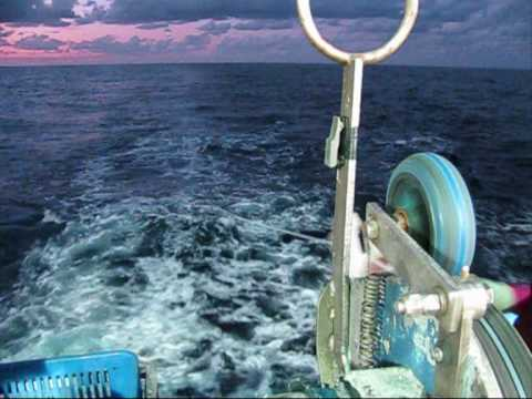 Tuna fishing aboard f v demi maddison youtube for Long line fishing